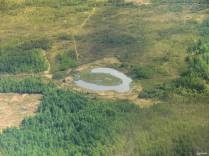 This interestingly shaped pond is either an oxbow lake, which is formed where a river or slough used to run, or a thawed area of permafrost.