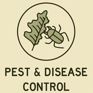 Pest disease control