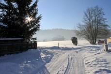 Beautiful winter morning