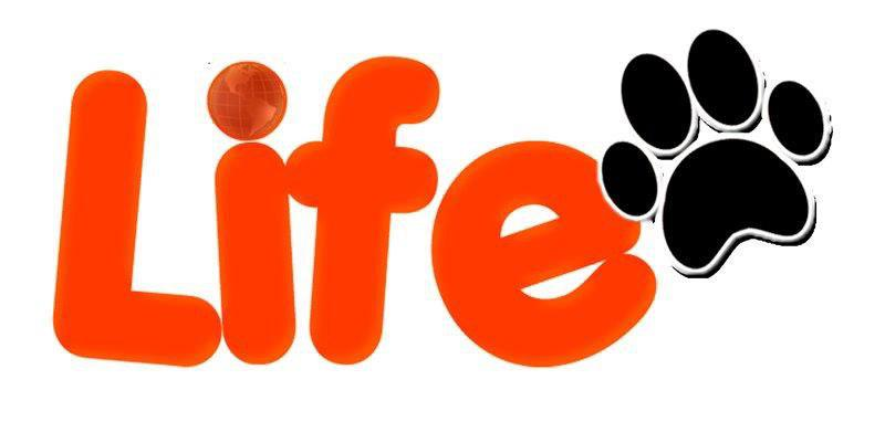 hl-life Partner ufficiali