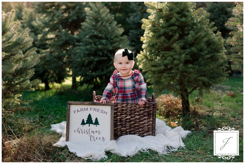 Christmas Tree Farm Photography.Christmas Family Mini Portrait Session At Ridilla Tree Farm