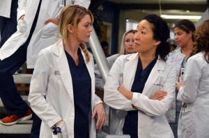 normal_scnet_greys10x14still_007