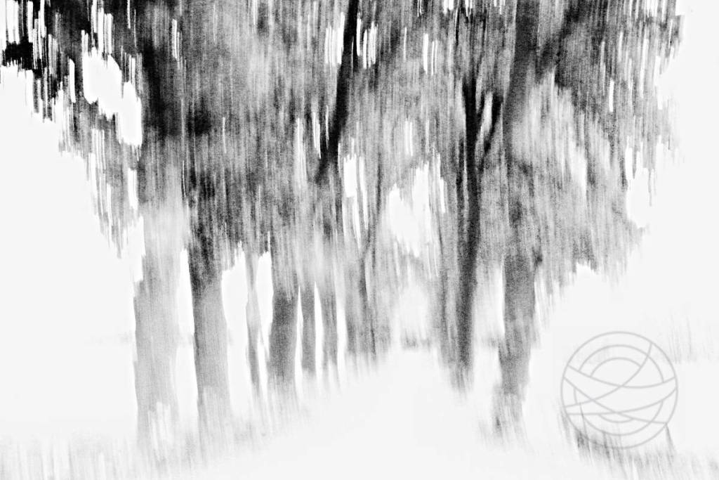 Lost - Abstract realistic and impressionistic fine art nature photography by Jacob Berghoef