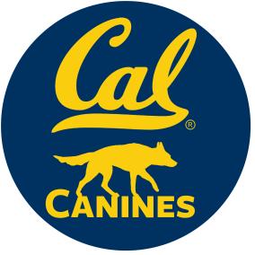 Logo by Judy Jinn