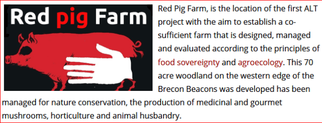 Red Pig farm logo