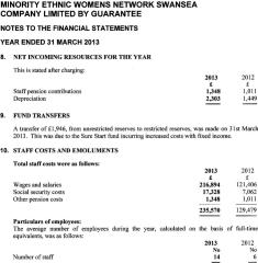 Mewn Staff Costs