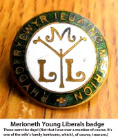 Young Liberal badge