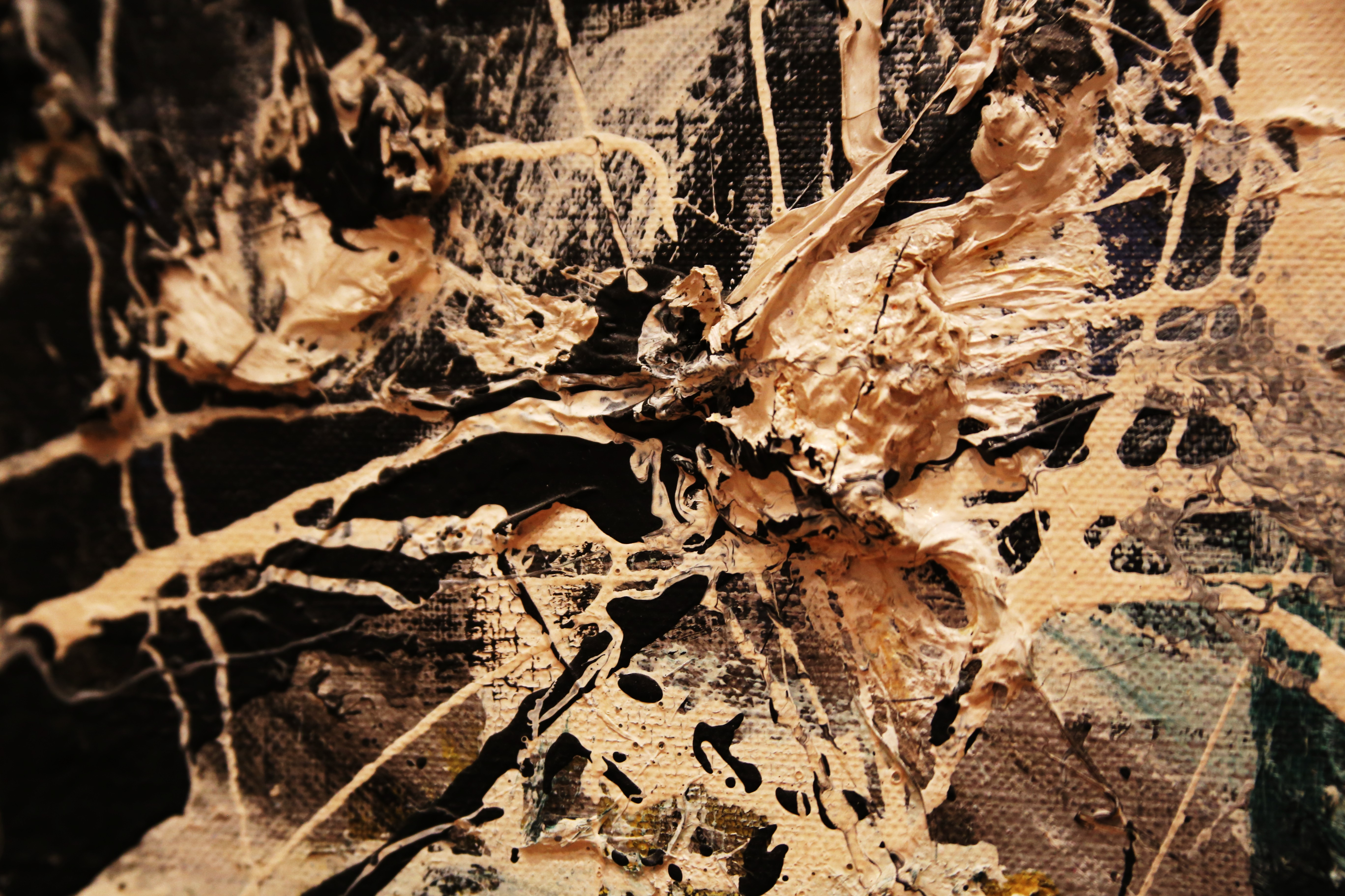 Jackson Pollock Tokidoki Nomad