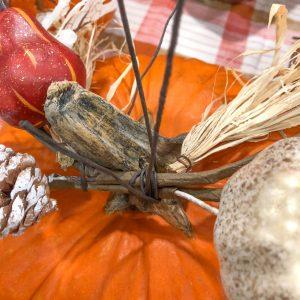 Pumpkin centerpiece stem