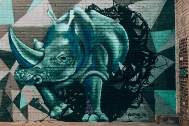 RiNo Art District Mural