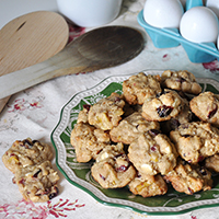 white chocolate cranberry cookie recipe Jacquelynne Steves