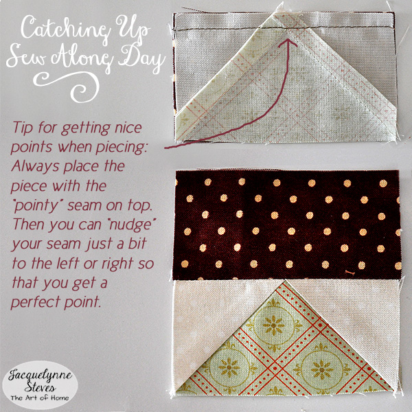 Sew Along Day Jacquelynne Steves 3