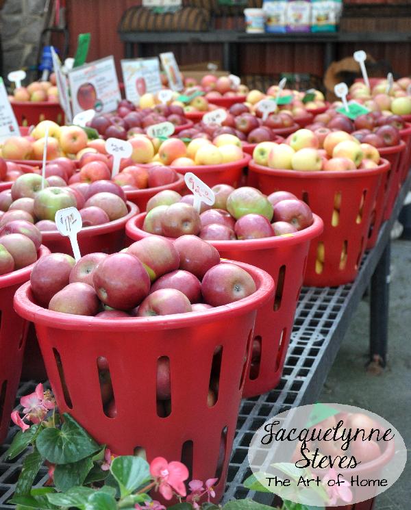Apple Baskets- Jacquelynne Steves