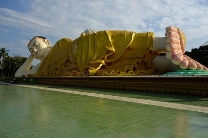 The young giant buddha: Naung Daw Gyi Mya Tha Lyaung