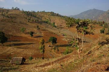 Myanmar landcape, dry