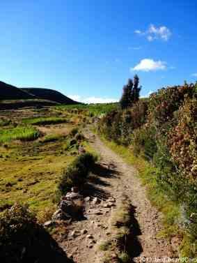 Road of Isla del Sol