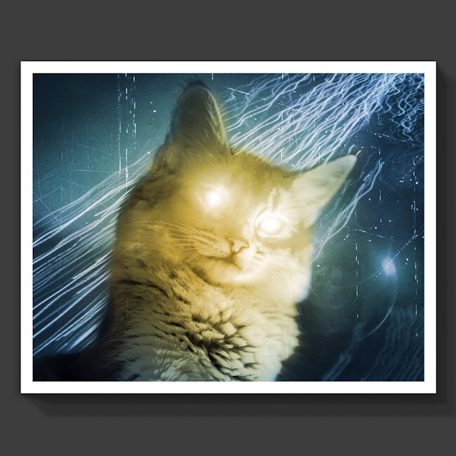 Chat robot cadeau poster art artwork