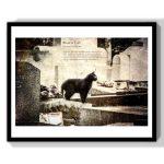 cat lover gift art print decor