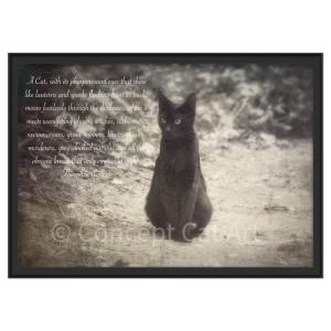 Théophile Gautier quote art photo