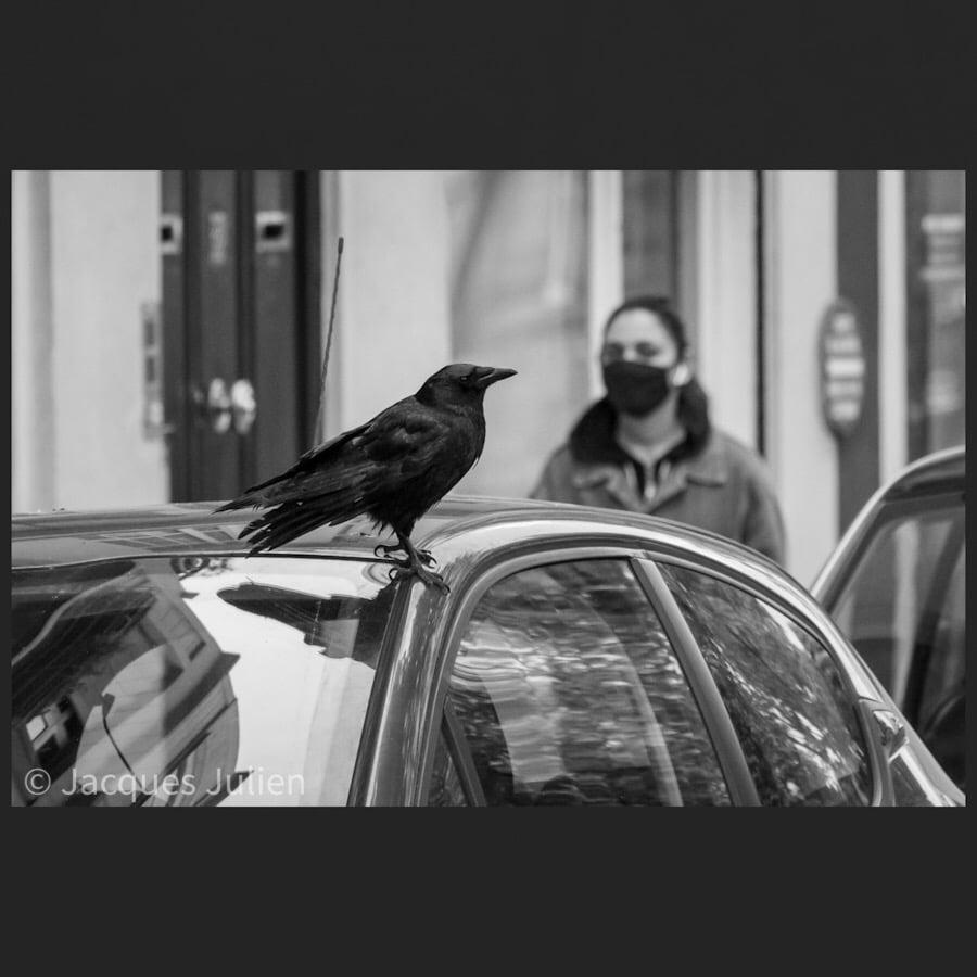 Jacques Julien Photographie noir et blanc