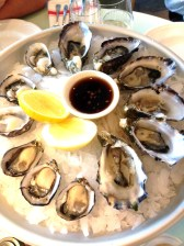 Oysters freshly shucked - Smoky Bay, Coffin Bay