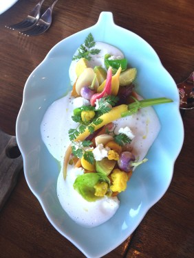 Young root vegetable salad with goat curd labne