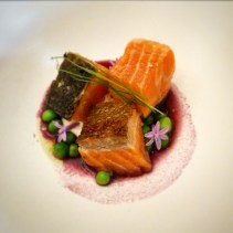 Ocean trout confit, beetroot and fermented blueberry