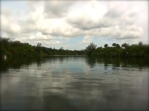 The Okeechobee Waterway or Cross State Canal is managed through a partnership of  F.I.N.D.and the US government.