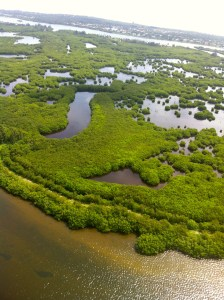 Intricate islands of central Indian River Lagoon near Vero. (Photo Jacqui Thurlow-Lippisch/Ed Lippisch, 2013.)