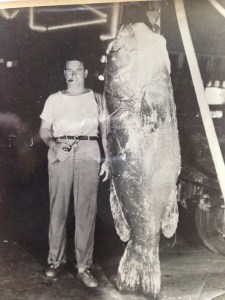 Unidentified man with Goliath Grouper caught in area. Photo courtesy of Bob Washam.