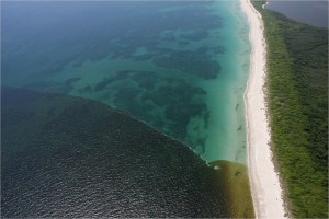 A photo from Martin County shows polluted runoff flowing over nearshore reefs along Hutchinson Island, 2011.