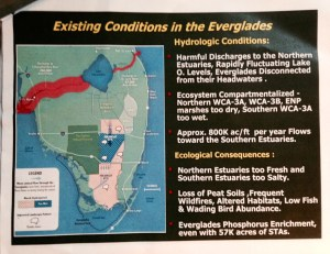 Slide from Robert Johnson's presentation, Everglades Coalition 2015.