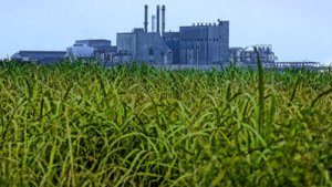 A sugar refinery in the Everglades Agricultural Area. (Public photo.)