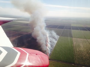 Burning sugarcane fields in the EAA. (Photo Jacqui Thurlow-Lippisch, 2012.)