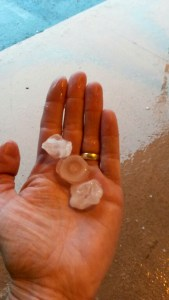 Photo of hail by Caroline Lawless, 4-18-15, in front of Team Fit in Cedar Point Plaza, Stuart.