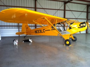 "Bo and Baron, our dogs, sitting by the Cub Legend, the plane used for most of the photographs. (JTL) In 2013 it was christened the ""River Warrior"" plane. :)"