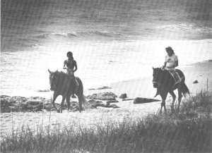 Stuart News photo ca 1980, Joseph Noble. Michelle White and Jacqui Thurlow ride along the beach Hutchinson Island.