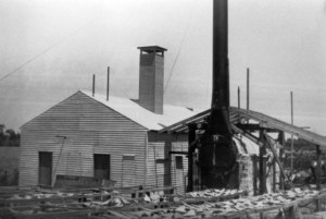 Port Salerno fishing village's shark factory ca. 1930s and 40s. (Photo courtesy of Stuart Heritage Collection and Alice Luckhardt.)