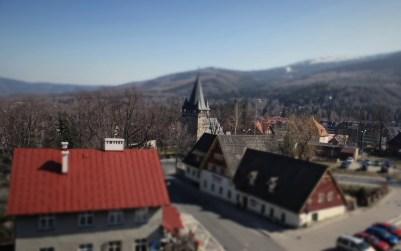 DW Bachus i Kościół NSPJ