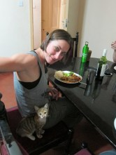 Amy loves cats. T or F? False, she thinks they're sent straight from the devil. This kitten was obviously unaware.