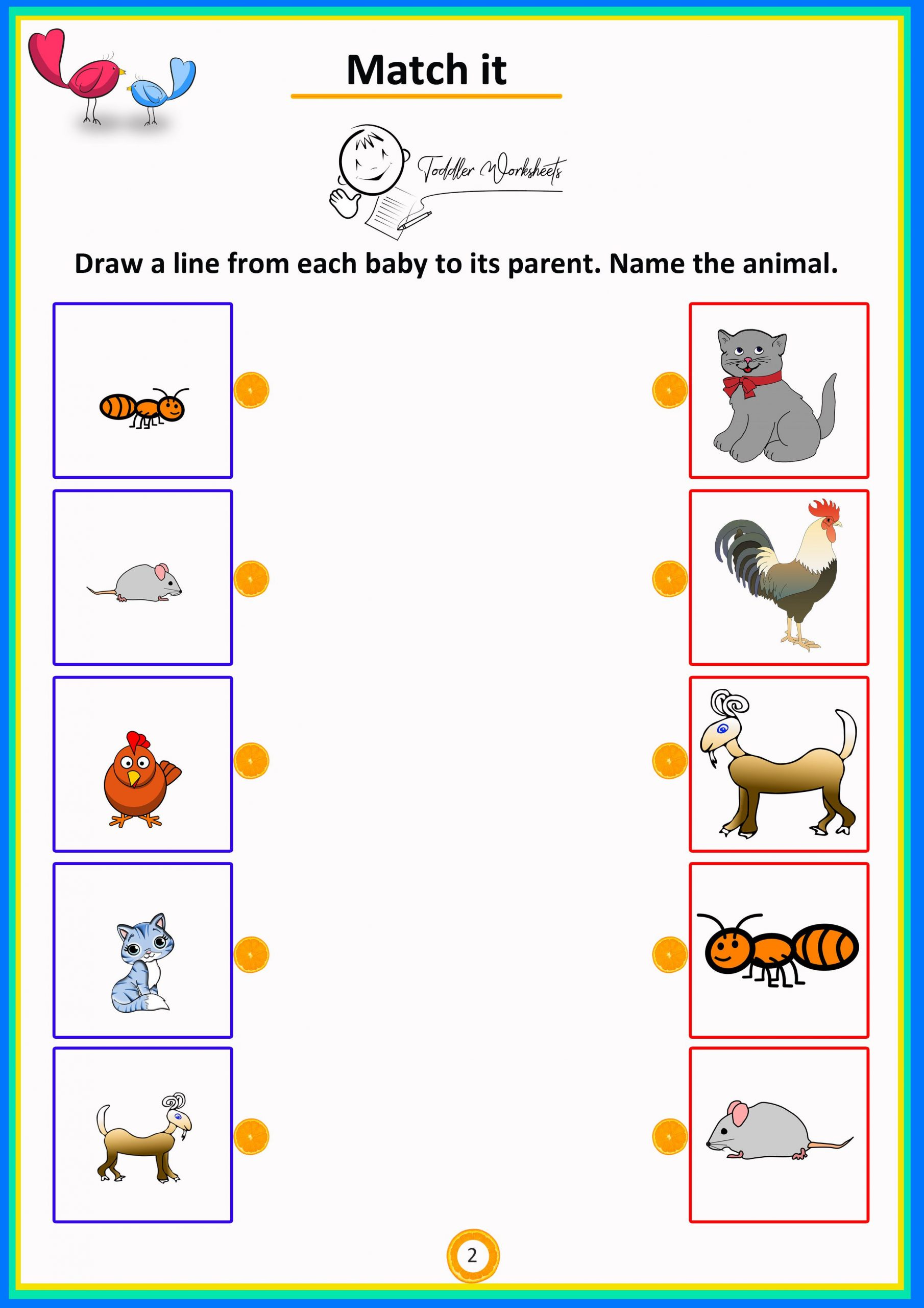 Animals And Their Babies Worksheet Template Library