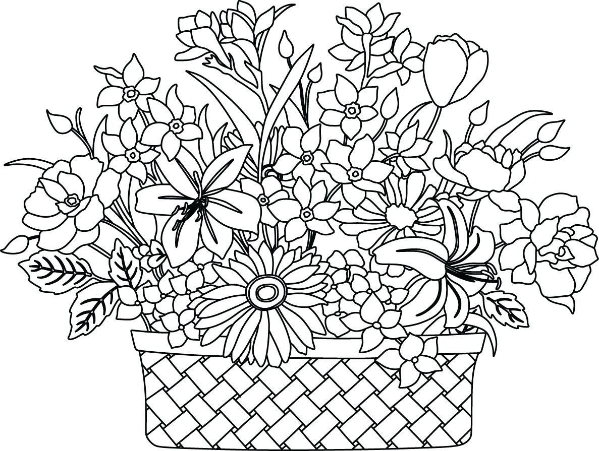 Food Coloring Flower Experiment Worksheet Template Library