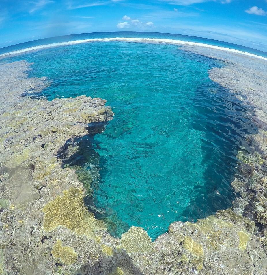 reef pool, niue, snorkelling in niue, diving in niue, snorkelling, image by Jade Jackson