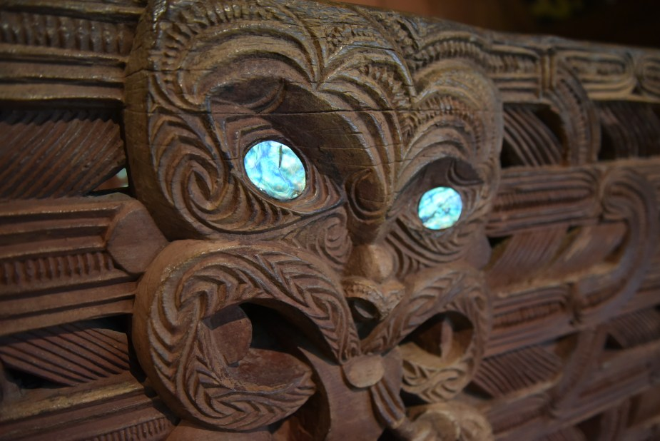 Maori, Wellington, Paua, New Zealand, move to New Zealand, image by Jade Jackson