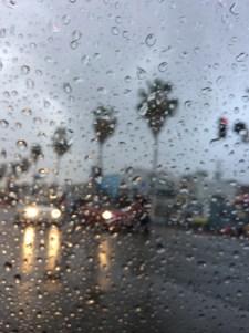 Sunset Boulevard, Los Angeles (14)