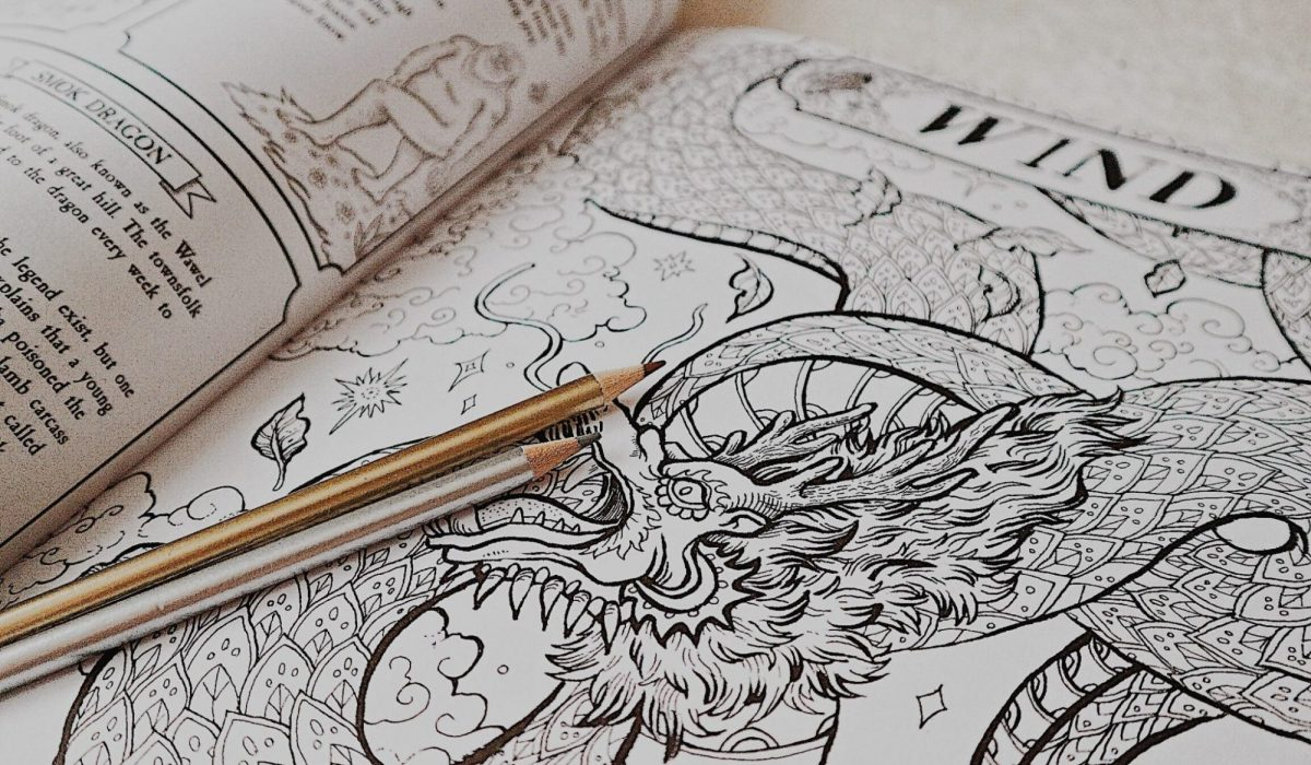 Harry Potter Adult colouring Book