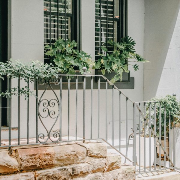 Grey railings outside a whitewashed house, with lots of green plants in a window box and on the railings too