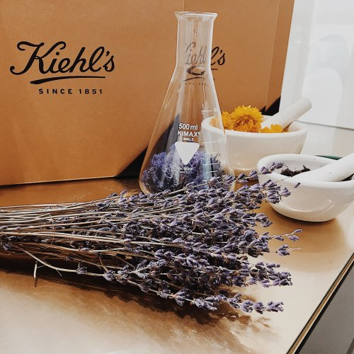 Kiehl's Blogging Event | Lavender | Flowers