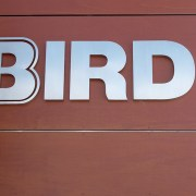 bird construction sign