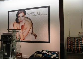 Window and Wall - Carolee